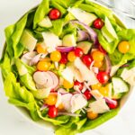 butter lettuce, tomatoes, cucumber, radish, red onion, cheese
