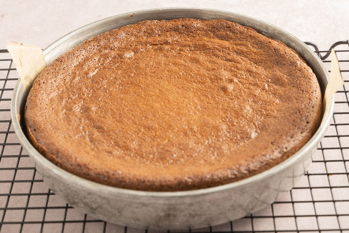 peanut butter cake in pan on cooling rack